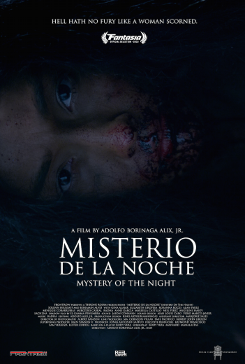 mystery_of_the_night_poster.png