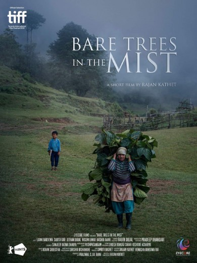bare_trees_in_the_mist_poster.jpg