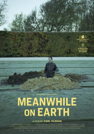 meanwhile on earth poster